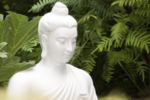 Bouddha et la loi d'attraction
