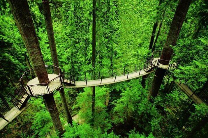Un pont entre 2 mondes